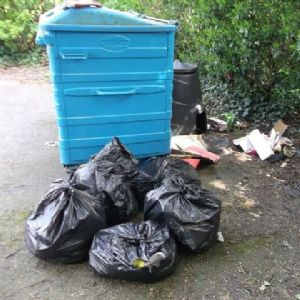 Village recycling bins reprieved